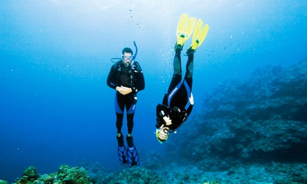 Discover Scuba Experience with Equipment Rental for One or Two at Adventure Sports Newmarket (Up to 72% Off)