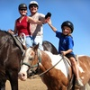 Up to 52% Off Private or Group Horseback-Riding Lessons