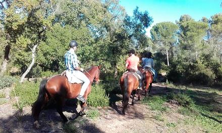 Ruta a caballo para dos o cuatro desde 24,95 € en La Suara