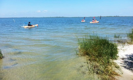 One or Two Single or Double Kayak Rentals at Dauphin Island Kayak & Bicycle Rentals & Tours (Up to 50% Off)