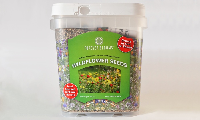 Platinum Seed Co. - Sandy: Vegetable-Seed Package, Wildflower Seed Package, or Both at Platinum Seed Co. (Up to 53% Off)