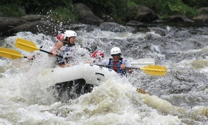Big Bear Rafting: Upper or Lower Pigeon Rafting Trip for Four or Six from Big Bear Rafting (Up to 55% Off)
