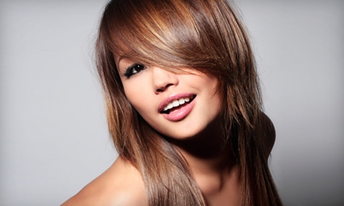 The Image Creator Salon & Day Spa - Blaine: Haircut, Blow-Dry, and Style with Option for Partial Highlights at The Image Creator Salon & Day Spa in Coon Rapids (Up to 60% Off)