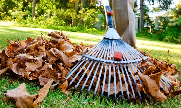 Lawn Exclusive - Richmond: $85 for Fall Leaf Cleanup from Lawn Exclusive ($170 Value)