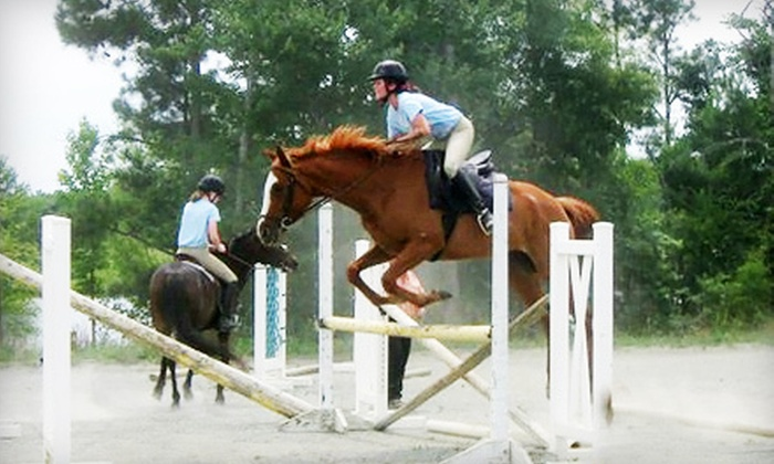Equestrian Arts Institute - Stags Trail: One-Week Horseback-Riding Summer Camp at Equestrian Arts Institute in Mebane (Up to 53% Off). Five Options Available.