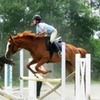 Up to 53% Off Horseback-Riding Camp in Mebane
