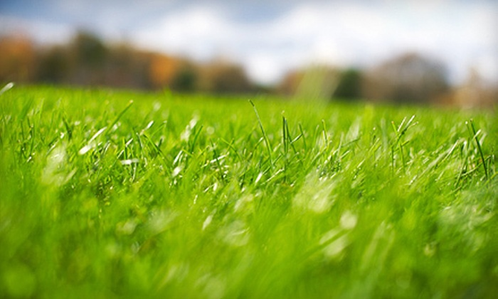 Make It Greener Full Service Lawn Care & Landscaping - Sweetbriar: Lawn Aeration for Up to a Quarter or Half Acre from Make It Greener Full Service Lawn Care & Landscaping (Half Off)