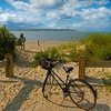 Up to 62% Off Winery Bike Tour