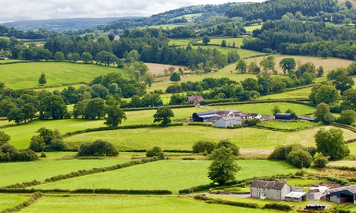 The Rat Trap Inn - Llangaview, Usk: Monmouthshire: 1 or 2 Nights For Two With Dinner and Breakfast from £45 at The Rat Trap Inn (Up to 63% Off)