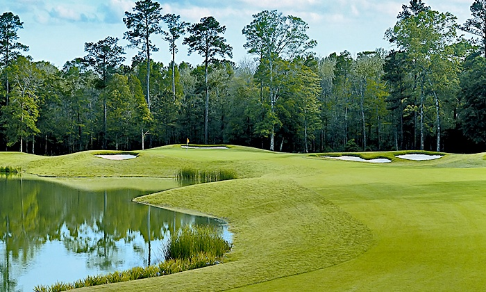 Carter Plantation - Springfield: $189 for 2015 VIP Golf Pass with Rounds, Lessons, and Hybrid Golf Club at Carter Plantation ($1,047 Value)