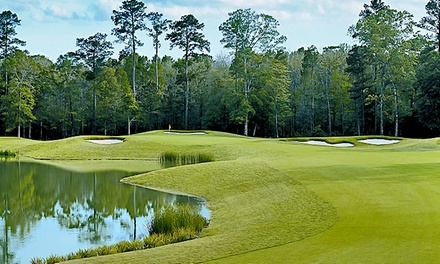 $189 for 2015 VIP Golf Pass with Rounds, Lessons, and Hybrid Golf Club at Carter Plantation ($1,047 Value)