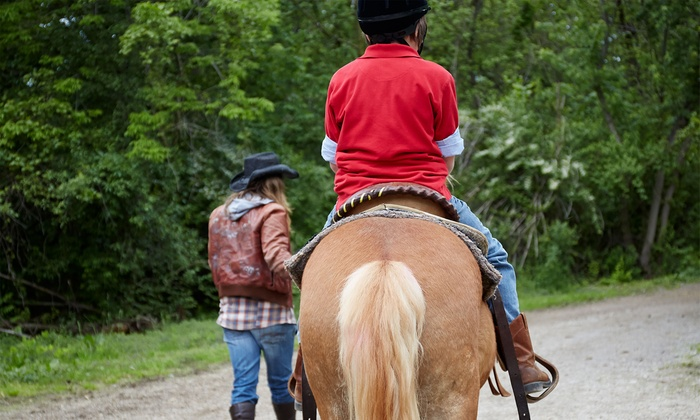 New Mexico Horse Adventures - Corrales: Two or Four 60-Minute Private Horseback-Riding Lessons at New Mexico Horse Adventures (Up to 51% Off)