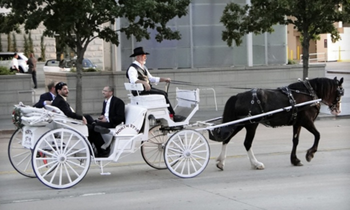 NorthStar Carriages - Multiple Locations: Valentine's Carriage Ride for Two or Carriage Ride for Up to Four from NorthStar Carriage (Up to 57% Off)
