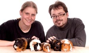 Foto Linse: 60 oder 90 Min. Haustier-Fotoshooting, optional auch mit Halter, bei Foto Linse (bis zu 85% sparen*)