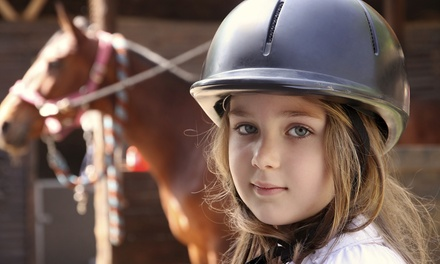 One or Two Private Horseback-Riding Lessons at Cameron Oaks Farm (Up to 52% Off)