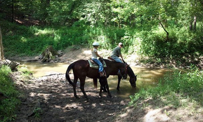 Pine River Stables - St. Clair: $20 for a 60-Minute Horseback Riding for Two at Pine River Stables in St. Clair (Up to $44 Value)