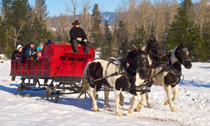 Idaho Sleigh Rides - Garden Valley: Private Sleigh Ride for 4 or 12 with Hot Drinks at Idaho Sleigh Rides (Up to 50% Off)