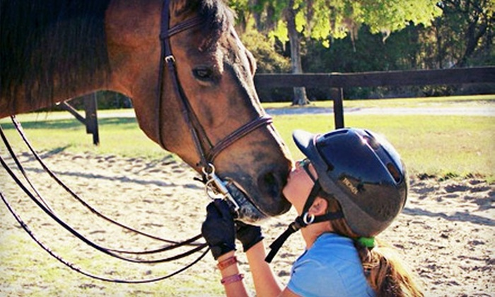 Arbordale Riding Academy - Keystone: Private Horseback-Riding Lesson or One-Week Camp at Arbordale Riding Academy (Up to 57% Off). Eight Options Available.