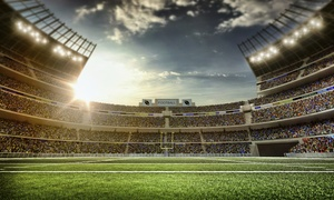 Houston Texans Tickets: Houston Texans Tickets