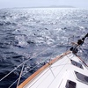 Up to 50% Off an Intro-to-Sailing Class