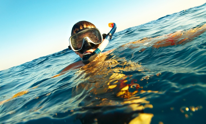 Unified Team Diving - Torrey Preserve: Two-Day Kids' Marine-Science Snorkeling Camp, Three-Day Zuba Camp, or Both from Unified Team Diving (50% Off)