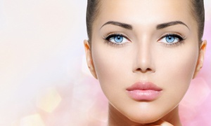 Inked Well Permanent Makeup: Permanent Makeup for Eyelids or Eyebrows or Lips at Inked Well Permanent Makeup (Up to 56% Off)