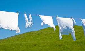 Laundry Ladies: Pick-Up and Drop-Off Laundry Service from Laundry Ladies (Up to 50% Off)