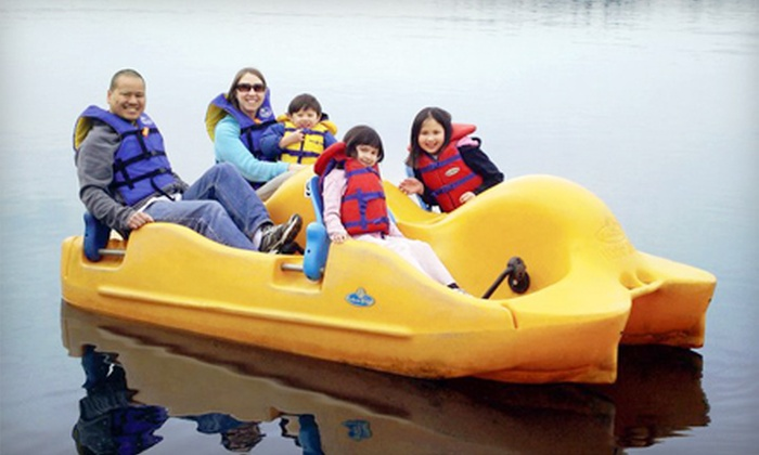 Deer Lake Boat Rentals - Deer Lake : Kayak, Pedal Boat, Rowboat, or Canoe Rental from Deer Lake Boat Rentals (Up to 52% Off). Three Options Available.