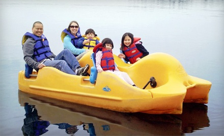 Kayak, Pedal Boat, Rowboat, or Canoe Rental from Deer Lake Boat Rentals (Up to 52% Off). Three Options Available.