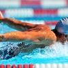 Up to 48% Off Membership at Alpine Hills Swim Club