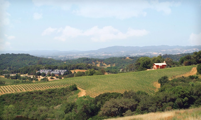 null - San Francisco: Stay with Winery Tour at Hotel Les Mars in Sonoma County, CA