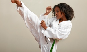 American School Karate: One or Two Months of Unlimited Karate Classes at American School Karate (Up to 82% Off)