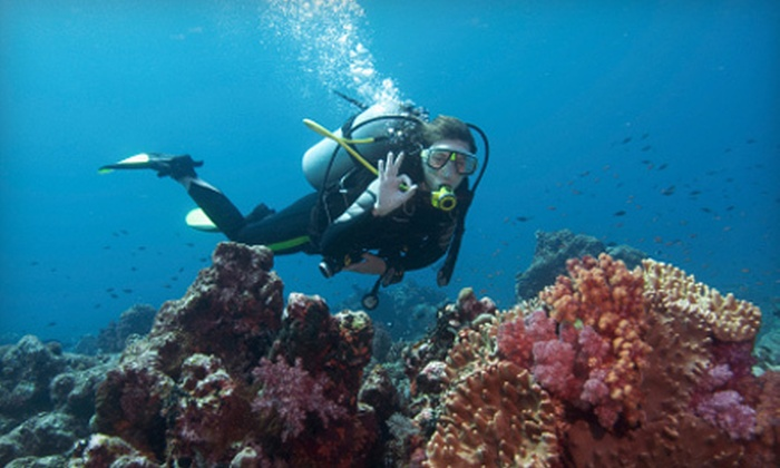 Beach Cities Scuba - Multiple Locations: PADI Open Water Diver Course With Optional Adventure Diver Course at Beach Cities Scuba (Up to 67% Off)