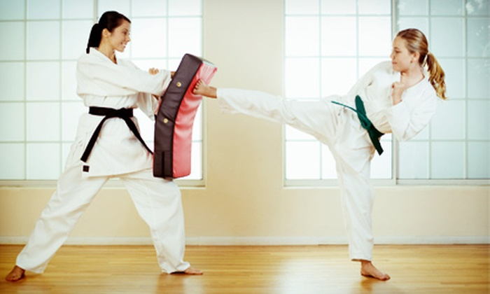 Premier Martial Arts - Shellmont: One or Two Months of Unlimited Fitness Classes at Premier Martial Arts (Up to 80% Off)