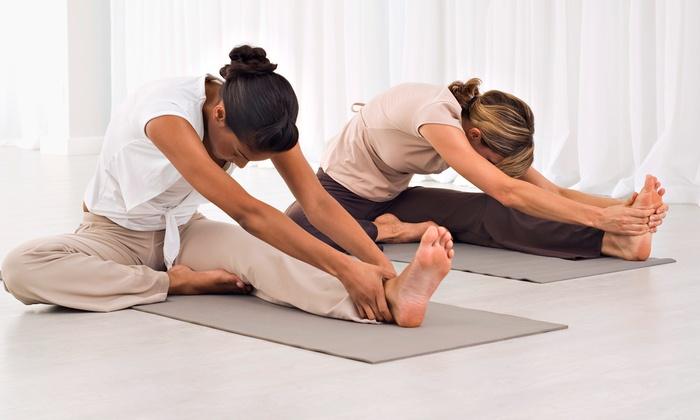 Yoga Seva Studio - Crystal Lake: $49 for 10 Classes at Yoga Seva Studio ($115 Value)