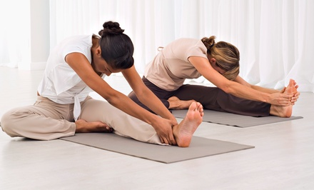 $49 for 10 Classes at Yoga Seva Studio ($115 Value)
