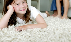 Maxi-Clean Carpet Care: Carpet Cleaning for Three or Five Areas and One Hallway from Maxi-Clean Carpet Care (Up to 61% Off)