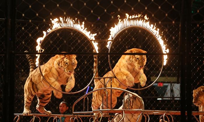 The Ben Hur Shrine Circus - H-E-B Center at Cedar Park: The Ben Hur Shrine Circus on January 15–18