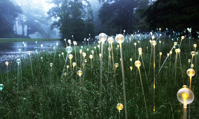 Atlanta Botanical Gardens Deals Atlanta Botanical Garden In Atlanta Ga Groupon Atlanta