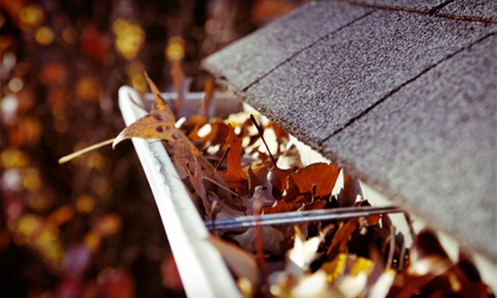 Darryl Moss Roof Care - Seattle Hill-Silver Firs: $99 for Gutter Cleaning and a Moss Treatment for a One- or Two-Story Home from Darryl Moss Roof Care ($424 Value)