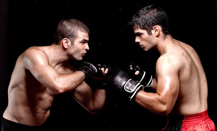 Four or Eight Weeks of Unlimited Kickboxing Classes with Gloves at Pride Martial Arts (Up to 76% Off)