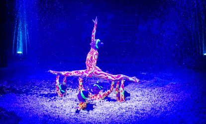 image for Christmas Spectacular Circus and Water Show, Hippodrome Circus (Up to 40% Off)