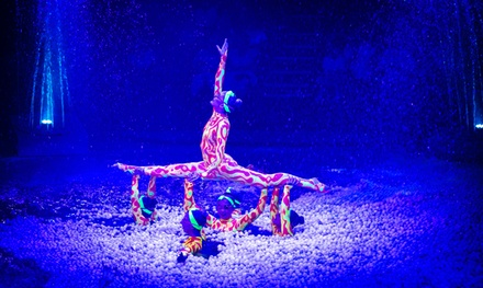 Christmas Spectacular Circus and Water Show, Hippodrome Circus (Up to 40% Off)