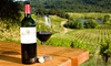 Daveste Vineyards - Troutman: Wine-Tasting Package for Two or Four with Souvenir Glasses at Daveste' Vineyards (Half Off)