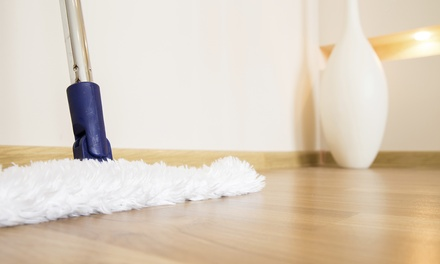 Two-Hour Basic Housecleaning Session or Party Cleanup Session from Zen Clean Solutions (Up to 53% Off)