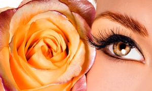 Mega Hair Elite: Full Set of Eyelash Extensions or Three Fills at Mega Hair Elite (Up to 54% Off)