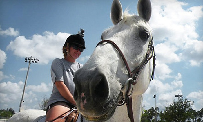 Lazy Acres Farms - Loxahatchee Groves: Horseback-Riding Lessons at Lazy Acres Farms (Up to 53% Off). Three Options Available.