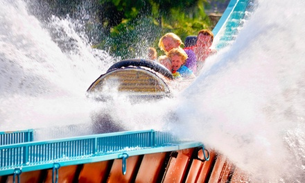 Slagharen: 2 4 Nächte für 2 Erwachsene und 4 Kinder in einer Hacienda inkl. Freizeitpark Eintritt und Aqua Mexicana