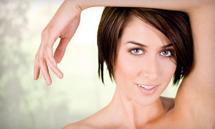 The Colorado Laser Clinic - Pulpit Rock: Six Laser Hair-Removal Sessions on a Small, Medium, or Large Area at The Colorado Laser Clinic (51% Off)