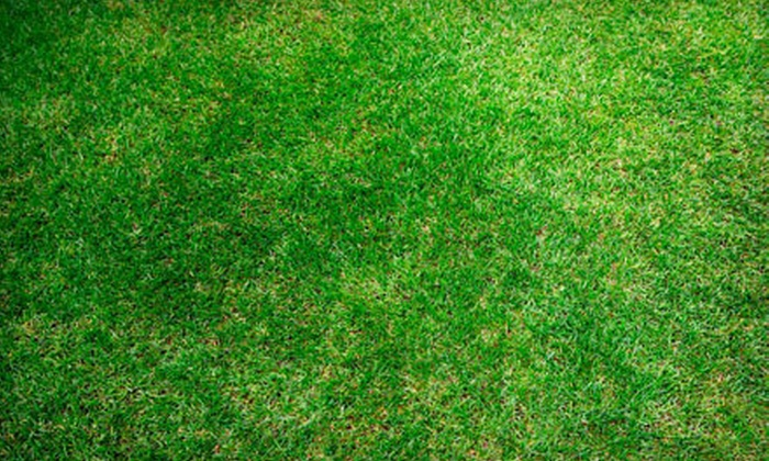 Riverfront Landscaping - Coulter Woods: $39 for Lawn Aeration for up to a Quarter Acre from Riverfront Landscaping (Up to $100 Value)